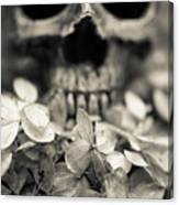 Human Skull Among Flowers Canvas Print