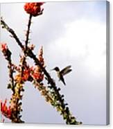 Hummer Likes Red Canvas Print