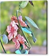 Hummer On Hummers Canvas Print