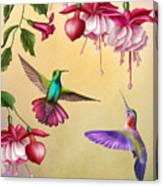 Humming Birds And Fuchsia-jp2784 Canvas Print