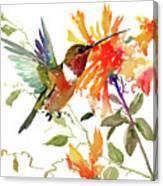 Hummingbird And Orange Flowers Canvas Print