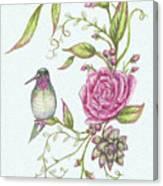 Hummingbird And Rose Canvas Print