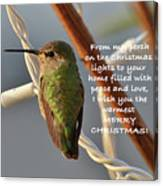 Hummingbird Christmas Card Canvas Print