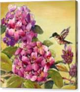 Hummingbird With Rhododendron Canvas Print