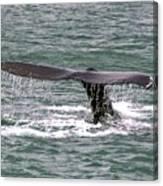 Humpback Whale Flute Alaska Canvas Print