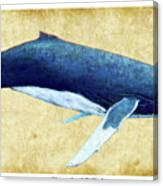 Humpback Whale Painting - Framed Canvas Print