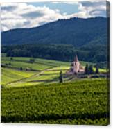 Hunawihr In The Vineyards Canvas Print