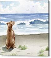 Hungarian Vizsla At The Beach Canvas Print
