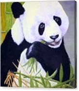 Hungry Panda Canvas Print