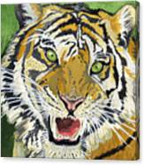 Hungry Tiger Canvas Print