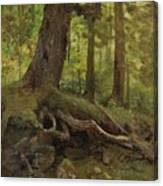 Hunter_in_the_white_mountains_near_glen_house Canvas Print