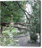 Hurricane Irene Canvas Print