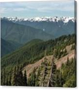 Hurricane Ridge View Canvas Print