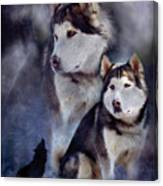 Husky - Night Spirit Canvas Print