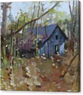 Hut In Woods Canvas Print