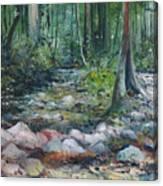 Hutan Perdic Forest Malaysia 2016 Canvas Print