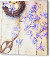Hyacinth Flowers And Nest Canvas Print
