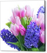Hyacinths And Tulips  Canvas Print