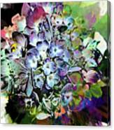 Hydrangea Abstract Canvas Print