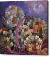 Hydrangeas 45 Canvas Print