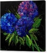 Hydrangeas 66 Canvas Print