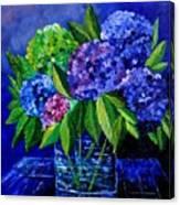 Hydrangeas 88 Canvas Print