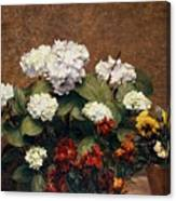Hydrangeas And Wallflowers And Two Pots Of Pansies Canvas Print
