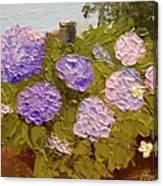 Hydrangeas On The Creek Bank Canvas Print