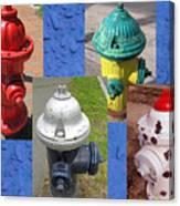 Hydrants 2 Canvas Print