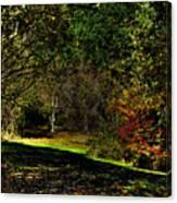 Hylebos In Autumn Canvas Print