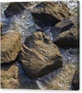 I Am A Rock Canvas Print