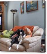 I Am Not A Couch Potato. I Am A Couch Dog Canvas Print