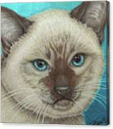 I Am Siamese If You Please Canvas Print