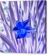 I Am So Blue Canvas Print