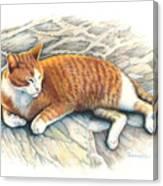 I Am Tiger Canvas Print
