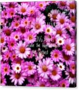I Believe In Pink Daisies Canvas Print