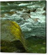 I Dreamed Of The River Canvas Print