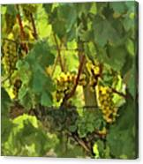 I Heard It On The Grapevine Canvas Print