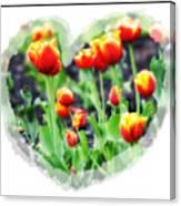 I Heart Tulips Canvas Print