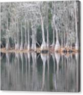 I Love Cypress Canvas Print