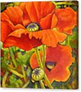 I Love Poppies Canvas Print