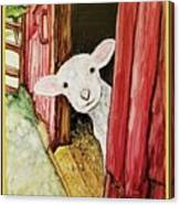 I See Ewe Little Lamb Canvas Print