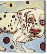 I See Spots Canvas Print
