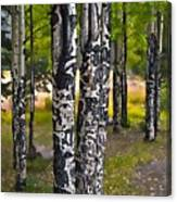 I See You - The Aspens Canvas Print