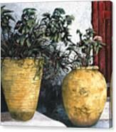 I Vasi Canvas Print