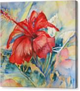 Ibiscus Canvas Print