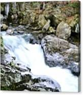 Ice And Moss Canvas Print