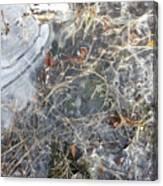 Ice Art Iv Canvas Print