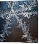 Ice Crossing Canvas Print