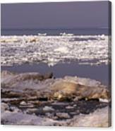 Ice On Lake Huron Canvas Print